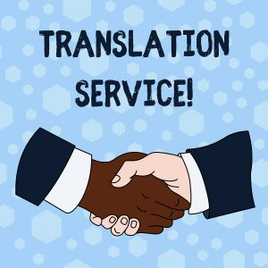 Professional Translator